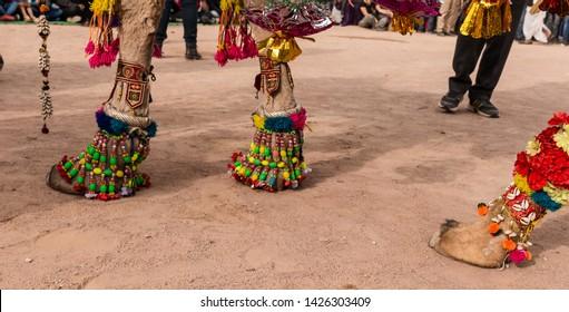 Camel Toe Images, Stock Photos  Vectors  Shutterstock-2099