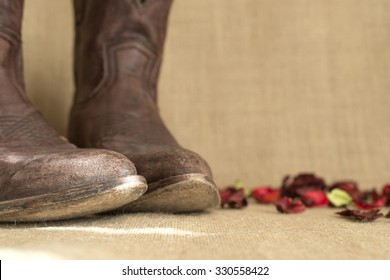 toes of brown cowboy boots, with negative space on the right