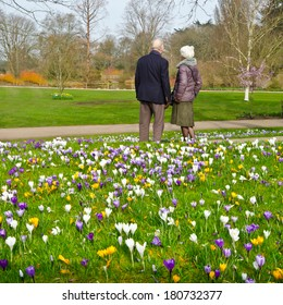 Life Insurance Elderly Images, Stock Photos & Vectors