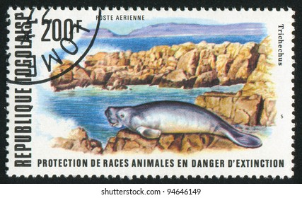 TOGO - CIRCA 1977: stamp printed by Togo, shows West African manatee, circa 1977