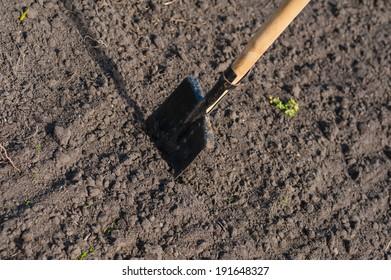 toil work of ground. spade insert soil