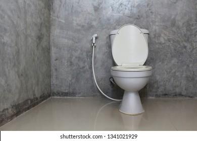 Toilet bowl with bidet shower in toilet.
