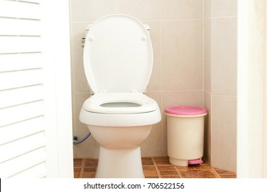 toilet door opening and white flush toile with a trash cans