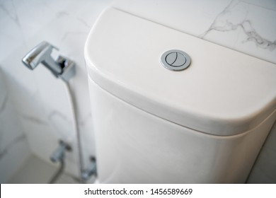 Toilet flush button in the restroom close-up
