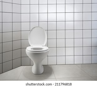 toilet with the lid open seat