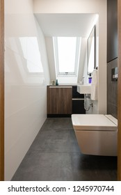 Toilet in modern house