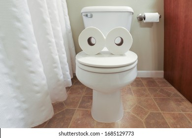 Toilet paper face formed with two toilet paper rolls on a toilet
