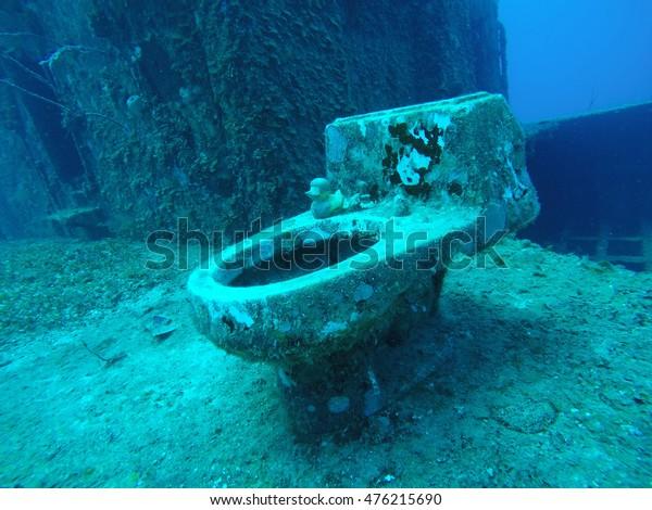 Toilet Sea Stock Photo (Edit Now) 476215690