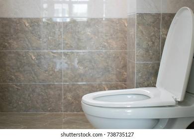 Toilet seat interior bathroom in luxury home