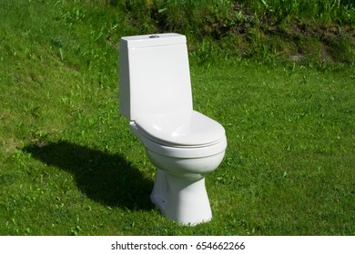 The toilet standing on the lawn, toilet bowl