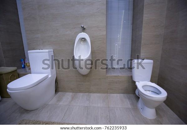 Toilet Urinal Bidet House Stock Photo Edit Now 762235933