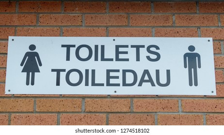 Toilets Sign in English and Welsh against brick Wall, Central View, shallow depth of field, Wales Cardiff Winter 2019