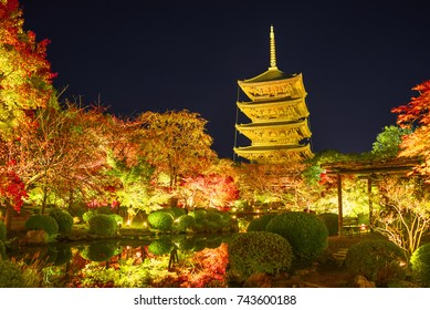 Toji Pagoda lit up at night in autumn, Kyoto, Japan.
