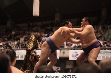 TOKYO - APRIL 7: Unidentified sumo wrestlers in a tournament on April 7, 2012 in Tokyo, Japan. Even though Sumo is Japan's national sport, most professional wrestlers are foreigners