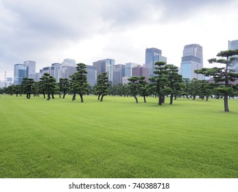 Tokyo city Building with Beautiful Park on cloudy day at Imperial Palace East garden, Japan
