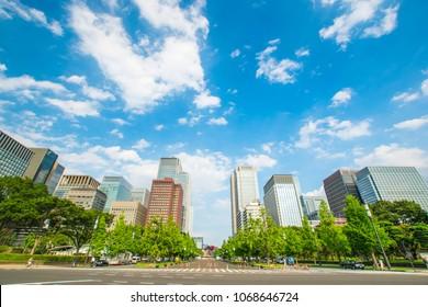Tokyo city landscape and fresh green in Otemachi Marunouchi.