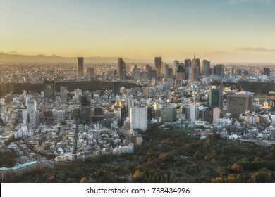 Tokyo city panoramic view during the sunset. Japan.
