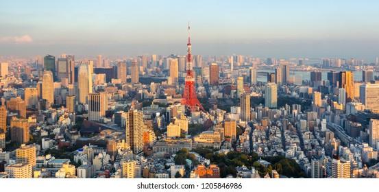 Tokyo city skyline at sunset , Japan