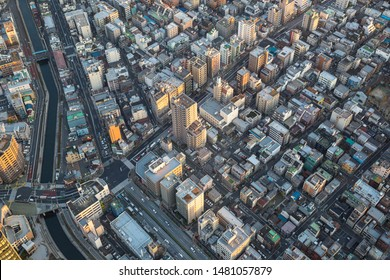 Tokyo city view in the evening