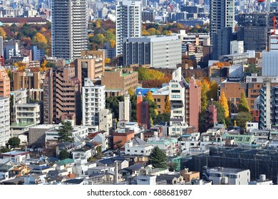 Tokyo cityscape with Bunkyo district. Big city aerial view.