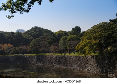 Tokyo Imperial Palace is the primary residence of the Emperor of Japan. It is a large park-like area located in the Chiyoda ward of Tokyo and contains buildings including the main palace.