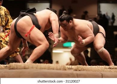 TOKYO - JANUARY 21: Close-up of two sumo wrestlers ready to engage in the Tokyo Grand Sumo Tournament January 21, 2009 in Tokyo, Japan.