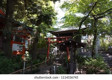 tokyo, japan, 05 08 2017 : view of kumano shrine in jiyugaoka