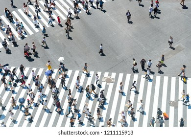 tokyo, japan. 14th august, 2018: pedestrians crossing the famous crowded shibuya crosswalk