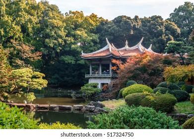 TOKYO. JAPAN - 17 OCTOBER 2016: The autumn scene of Shinjuku Gyoen National Garden on October 31, 2016