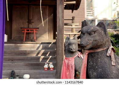 TOKYO, JAPAN. 2018 May 22nd. Oinari-sama Statue, is a Fox animal stone statue at Japanese Temple.
