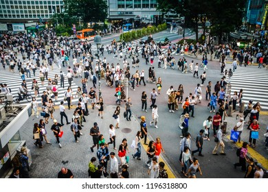 Tokyo, Japan 7 July 2017: Mass of people crossing the street in Tokyo. Tokyo, Japan view of Shibuya Crossing, one of the busiest crosswalks in the world. Mass of people crossing the street in Tokyo.