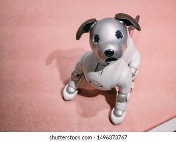 Robot Pet Images, Stock Photos & Vectors | Shutterstock