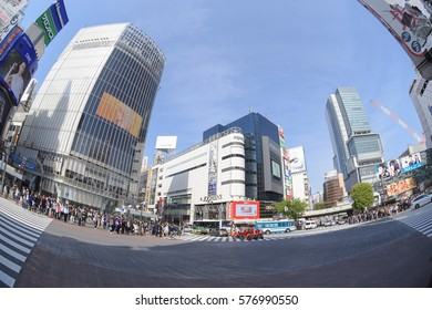 Tokyo, Japan - April 18, 2015: Pedestrians walk at Shibuya district in Tokyo.The scramble crosswalk is one of the largest in the world.