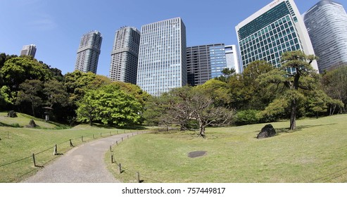 Tokyo, Japan -April 20, 2017: The traditionally styled garden stands in contrast to skyscrapers of Shiodome discrict. Hamarikyu Gardens in spring with blooms, Chuo district.
