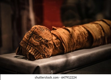 Tokyo, Japan - April 29 2017, Ancient Egyptian cat mummy around 2000 years ago  at National Museum of Nature and Science