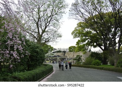 Tokyo, Japan - April 9, 2016: Tokyo Imperial Palace Park. A historic site where shogun Tokugawa lived. Edo castle was originally built in 1457. Japanese emperor and his family live here now.