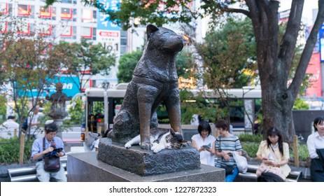 Tokyo, Japan - August 2018: Cat sleeping under Hachiko the dog memorial statue infront of Shibuya station.