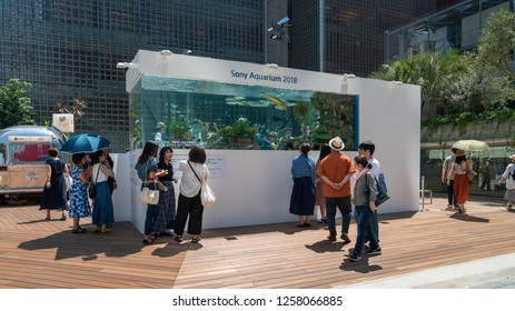 Tokyo, Japan - August 2018: Sony aquarium infront of Ginza Sony Park with tropical fish and people watching them, Tokyo, Japan