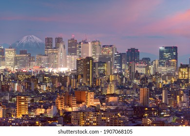 Tokyo, Japan cityscape with Fuji at dusk.