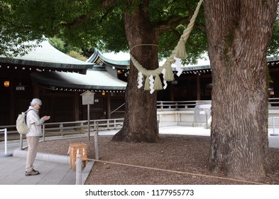 TOKYO, JAPAN - DECEMBER 14,2014: The faithful traveller worship with blessing tree and the Shimenawa in Meiji shrine area, Tokyo