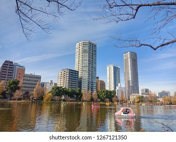 Tokyo, Japan - December 25, 2018 : Pleasure boats in Sinobazu pond, Ueno park, toyko, Japan