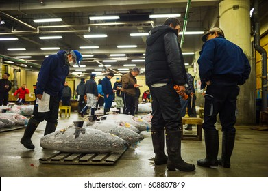 TOKYO, JAPAN - FEBRUARY 16, 2017 : Tsukiji fish market, the largest and busiest fish market in the world. Best fresh and frozen Tuna were sold here everyday via auction.