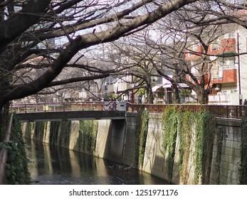 Tokyo, Japan - February 17, 2018: Tokyo shopping streets, Nakameguro-Daikanyama, during Winter.