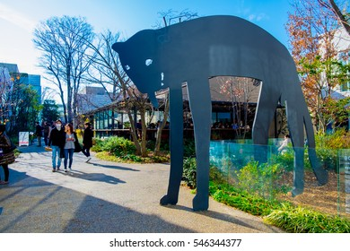TOKYO, JAPAN - January 3, 2016: Daikanyama T-site garden at Daikanyama, is a quieter shopping district in Shibuya with more upscale luxury clothing stores and cafes