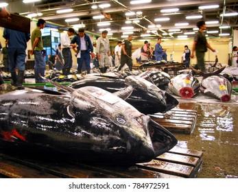 Tokyo, Japan - June 10, 2010:  Fresh Tuna Auction at Tsukiji Fish Market