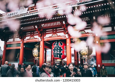 TOKYO, JAPAN - MARCH 22, 2018: Sensoji temple with cherry blossom and people. Asakusa Temple is one of Tokyo Landmark located in Asakusa area.