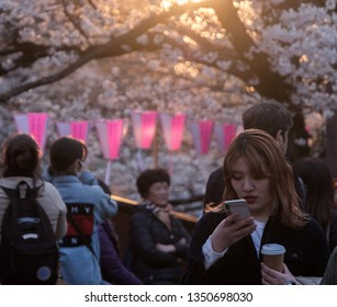 TOKYO, JAPAN - MARCH 25TH, 2019. Locals and tourists enjoying the cherry blossoms at sunset in by Meguro River.