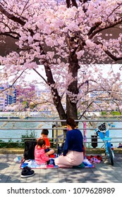 TOKYO JAPAN - MARCH 27, 2018 : Sumida riverside, Unidentified Japanese mother taking her children picnic under the tree Sakura. this activity was very popular during the early cherry blossoms.