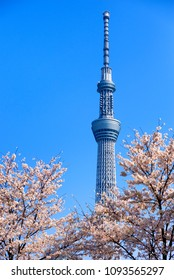 TOKYO JAPAN - MARCH 28, 2018 : Skytree building tower, One of these high buildings is a landmark of the capital. This building is a wireless broadcast tower. It is one of the pride of the Japanese.
