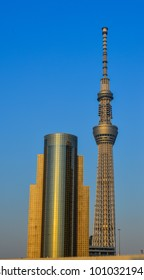 Tokyo, Japan - May 20, 2017. View of Tokyo Skytree, the tallest construction in Tokyo, Japan.
